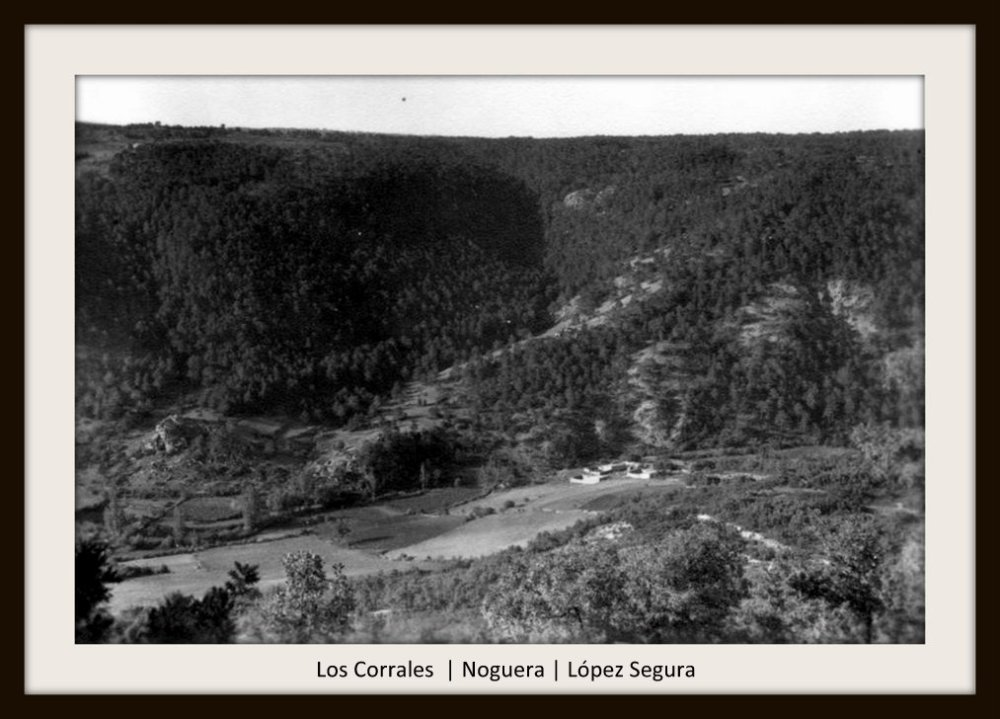 Noguera de Albarracín (1947-1956) | López Segura (5/6)