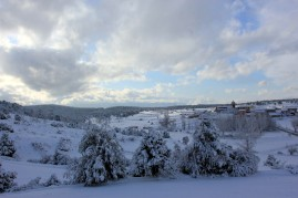 Rubiales en Invierno