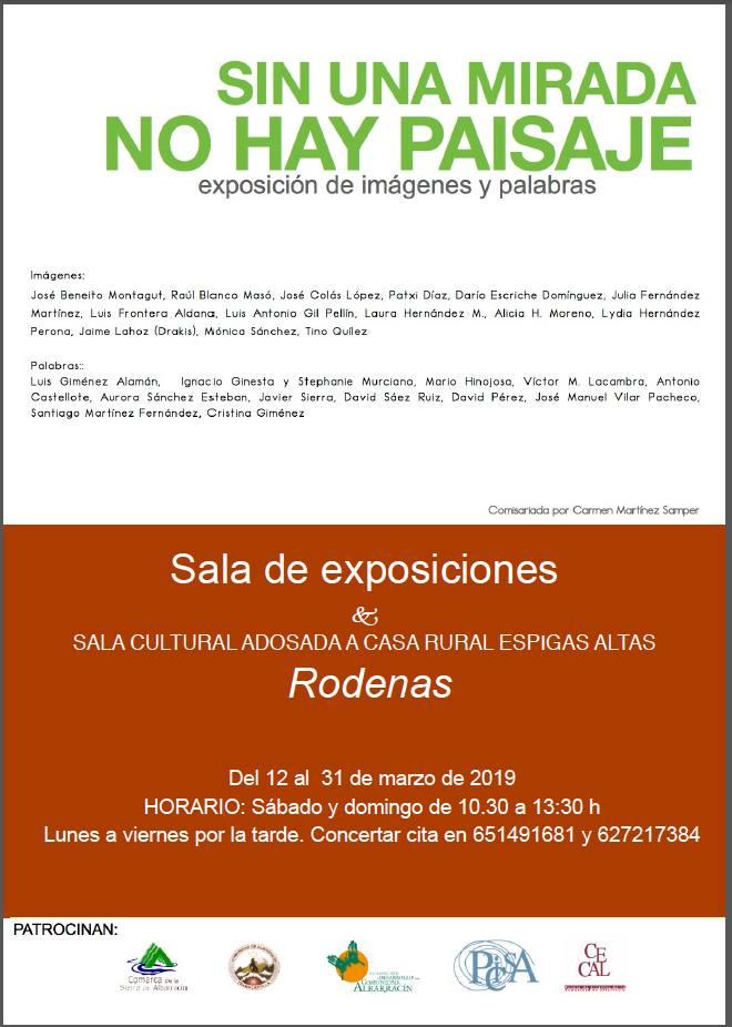 Poster_Sin-una-mirada_Rodenas