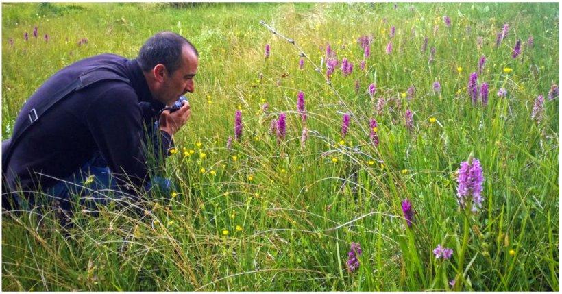 Prospección de campo (Orquideas)