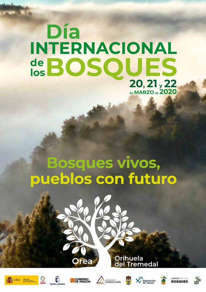 Poster_del_Dia_Internacional_de_los_Bosques_2020